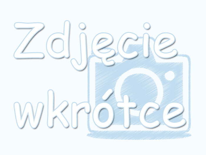www noclegi w chorwacja vinisce